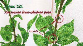 Бокаловидная роза. 🌹 Урок 10 - Шипы / Cup-shaped rose. Lesson 10 - Thorns