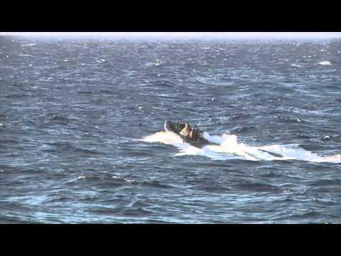 HMS Argyll drug-bust in the Caribbean - Nov 2014