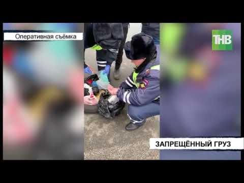Привезли в Казань из Новосибирска 4 килограмма наркотиков шести видов   ТНВ