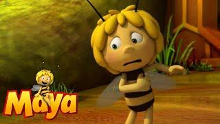 Bee clean - Maya the Bee - Episode 21