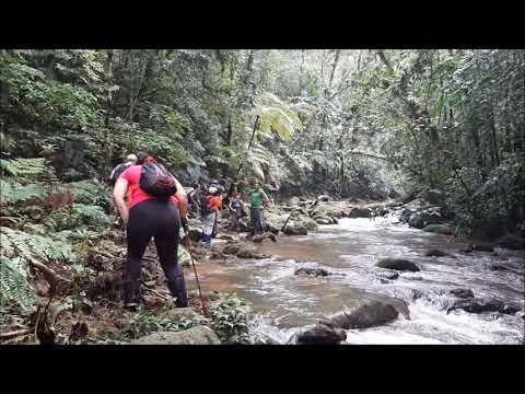TRILHE no Poço das Antas - Pousada Salve Floresta - Tapiraí - SP