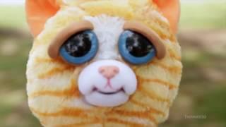 Feisty Pets - злющие плюшевые игрушки из США