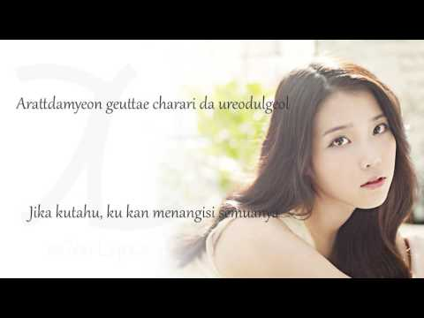 IU - The Story Only I didn't Know [ Rom+ Indo Sub] Lyrics