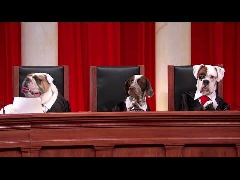 Pom Wonderful, LLC v. The Coca-Cola Company: Oral Argument - April 21, 2014