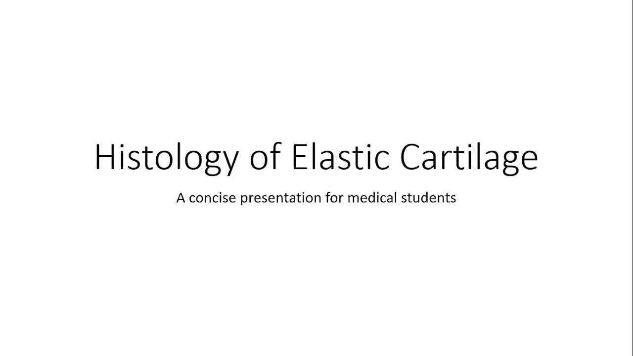 Elastic Cartilage Histology Youtube