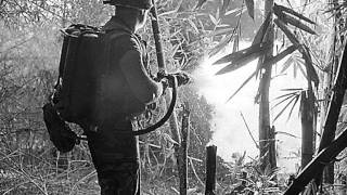 Vietnam War 1955 - 1975