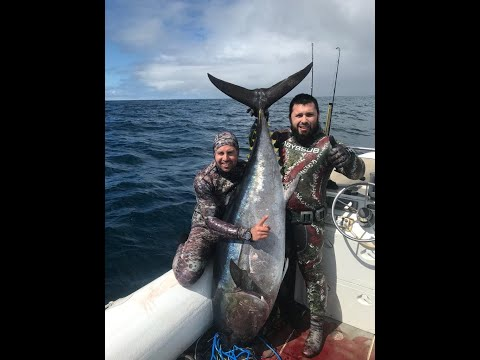 Action Spearfishing Ep. 3 Summarised Version - 100kg+  Bluefin Tuna Australian Waters VIC & SA 2019