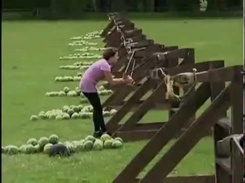 Download Dumme Frau bekommt Melone gegen die Rübe