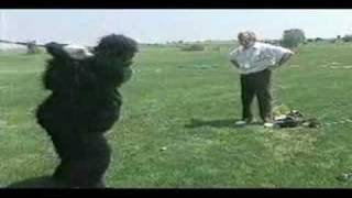 Magilla Gorilla cures his slice with the No Bananas anti-slice driver - golf commercial