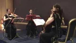 Indian wedding entrance music: Bollywood string quartet (Chura Liya Hai Tumne instrumental)