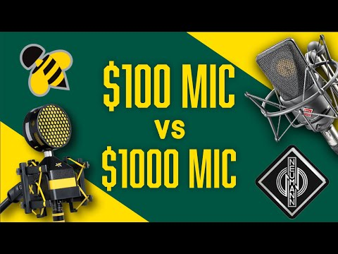Neumann TLM103 vs Neat Microphones Worker Bee | Mic Comparison for Broadcasters & Podcasters