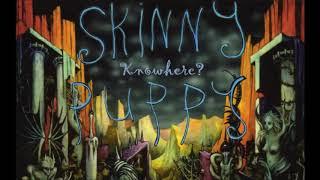 Skinny Puppy - Last Rights (Full Album Stream)