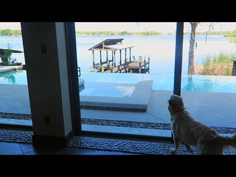 COOPER AND KODA CHECK OUT THEIR NEW HOUSE! (Super Cooper Sunday #53)