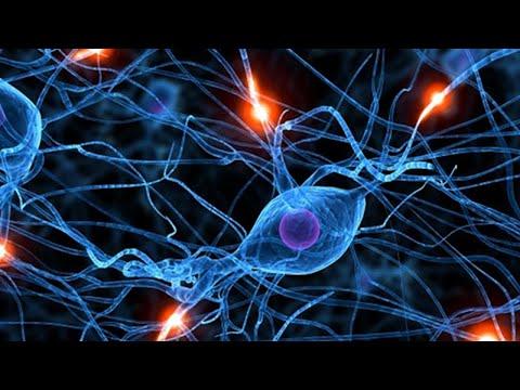 Memory Retention Meditation Technique