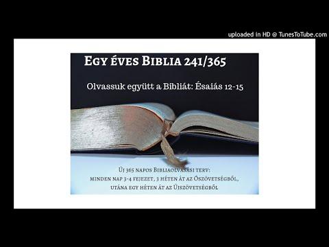 Egy éves Biblia 241/365