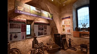 Visita virtuale Mulsa - Sala 12 - Viticoltura ed Enologia