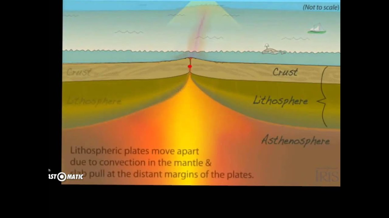 sea floor spreading Sea floor spreading 1 mapping the mid-ocean ridge• the mid-ocean ridge is the longest chain ofmountains in the world• in the 1950's scientist mapped the mid-oceanridge using sonar•sonar is an instrument that uses sound wavesto measure distance.