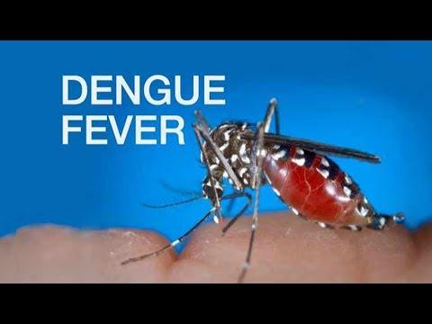 DENGUE FEVER: Sintomas at Tamang Gamutan - ni Doc Richard Mata (Pediatrician) #3b