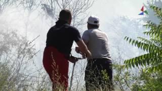 Прилог- Пожарот над Баница и Водоча целосно изгаснат