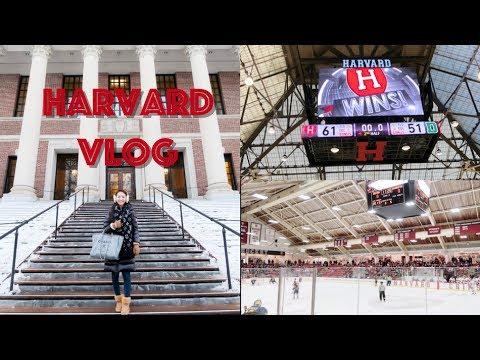(中文English Subs) ❤️ Elaine Hau - Vlog: 哈佛校園生活 Harvard School Life 📚