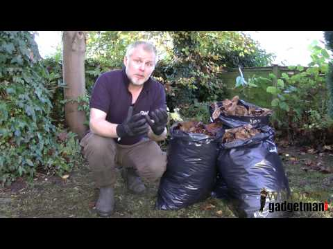 Wildlife Gadget Man - What To Do With Autumn Leaves