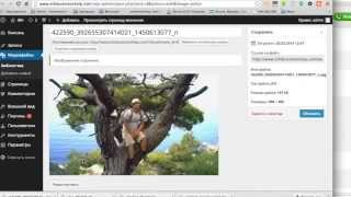Как создать сайт на wordpress с нуля!