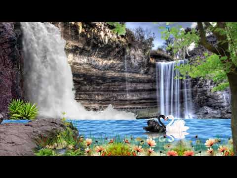 Teri Galiyan themes ringtone background video full HD new