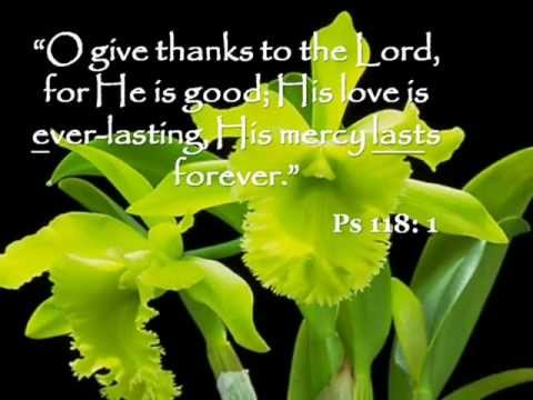 Responsorial Psalm - Psalm 118 Give Thanks to the Lord for He is Good