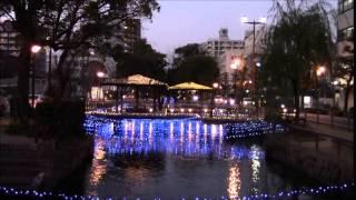 西川緑道公園のイルミネーション