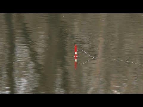 Рыбалка на маховую удочку в 2019 году видео