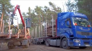 Załadunek drewna i wtopa Renault 450 DXI Premium.