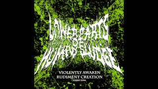 Lower Parts of Human Sludge - Restless Flickering Distorted Shadows