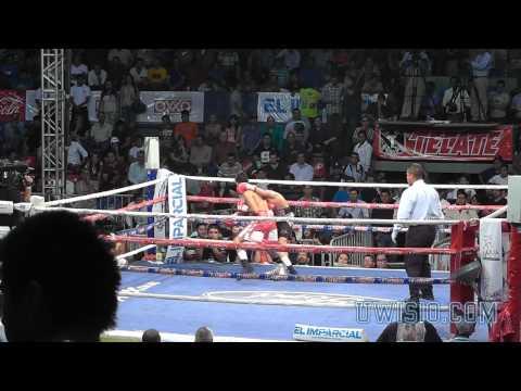 Pelea de Box: Roberto Sanchez vs Luis Castro