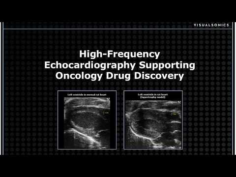 High Frequency Echocardiography Supporting Oncology Drug Discovery
