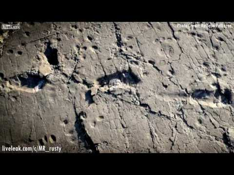 3,6 Million Year Old Human Footprints found