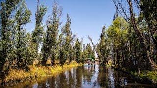 Chinampas de Xochimilco, paraíso de la cocina capitalina