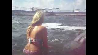 schwimmen mit delfinen in Kuba