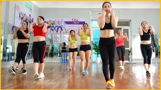 20 Minute Aerobic Exercises (Lose Weight - Lose Belly Fat) | EMMA Fitness