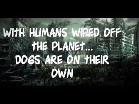 Amazing Dog Tricks- CAN DOGS SURVIVE ZOMBIE APOCALYPSE? Chicago Dog Training & Talent