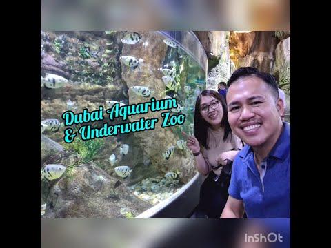 Complimentary Dubai Aquarium & Underwater Zoo Experience 2020