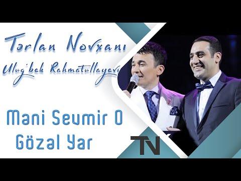 Tərlan Novxanı &