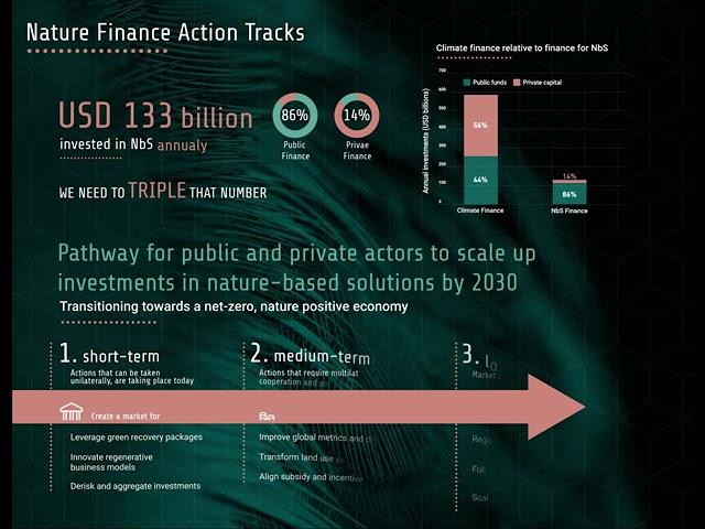 Pérdida de recursos naturales amenaza a la economía mundial
