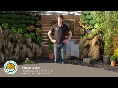 Comment créer et mettre en place un jardin zen? - YouTube