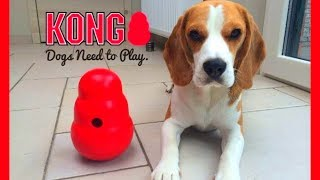 "Dog Toy Critic ""louie The Beagle "" Episode #2 : Kong Wobbler"