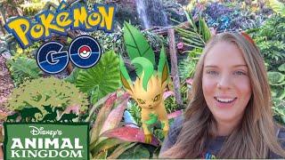LEAFEON and GLACEON Evolutions at Disney's Animal Kingdom! Pokémon Go Vlog