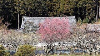 京都・丹波とその近郊の社寺