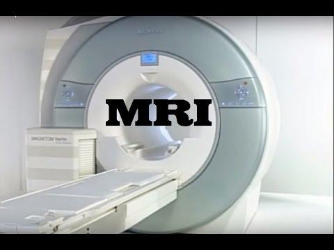 MRI Simulator
