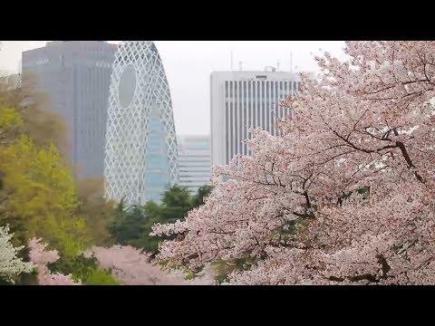 Япония - страна