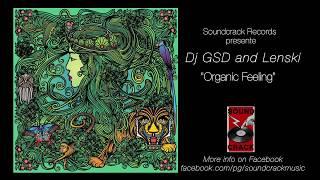 SoundCrack Records 'Organic Feeling' by Dj GSD