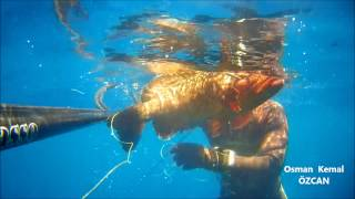 Spearfishing Grouper Osman Kemal ÖZCAN Grida Karakulak Orfoz Avı